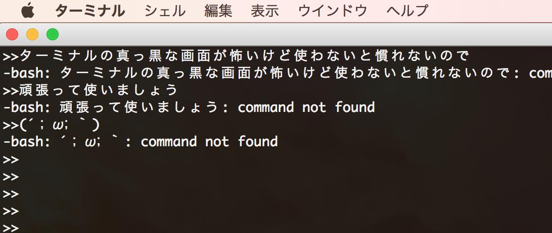 terminal-setting-bash_profile1